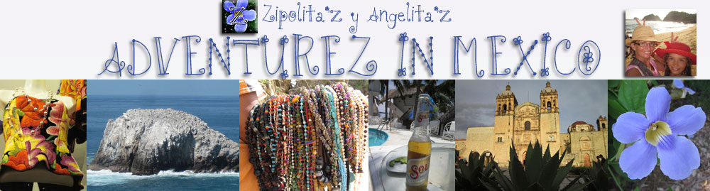 header for Adventurez In Mexico blog